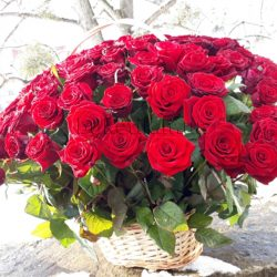 Фото товару 101 червона троянда в кошику