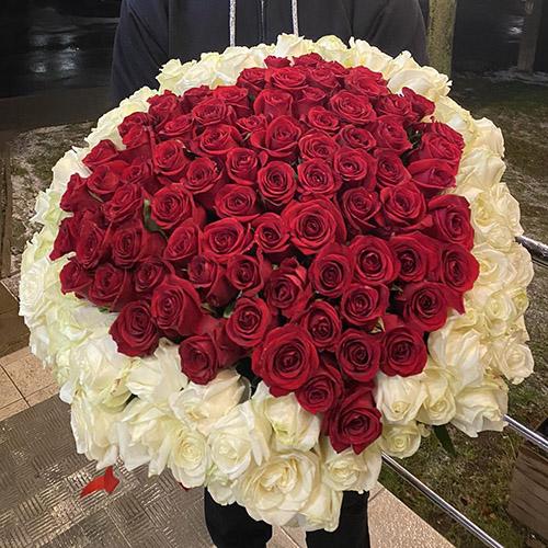 101 троянда серцем із білим обідком фото букета