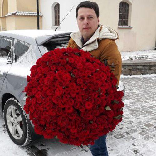 Фото товару 201 червона троянда