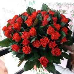 """Фото товару 51 троянда """"Ель-Торо"""""""