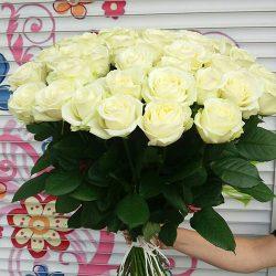 51 біла троянда «Аваланч»