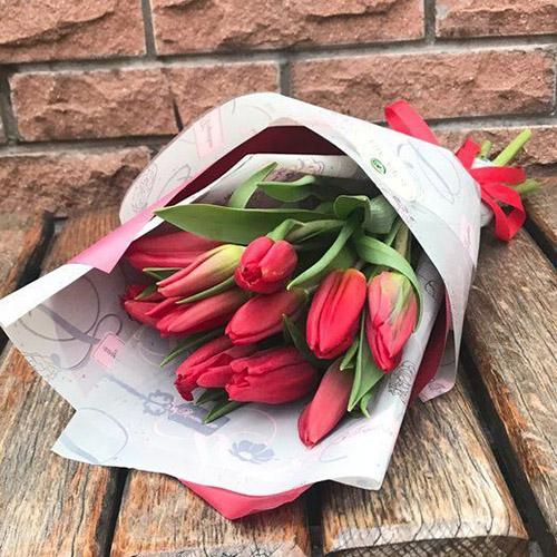 фото 11 червоних тюльпанів