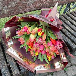 49 тюльпанів асорті фото