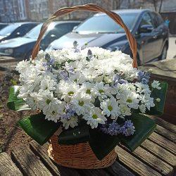 """""""Квіткова поляна"""" хризантеми в кошику"""
