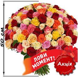 Фото товару 101 троянда мікс (50 см)