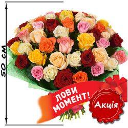 Фото товару 51 троянда мікс (50 см)