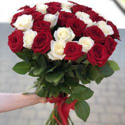 фото букета 51 червоно-біла троянда