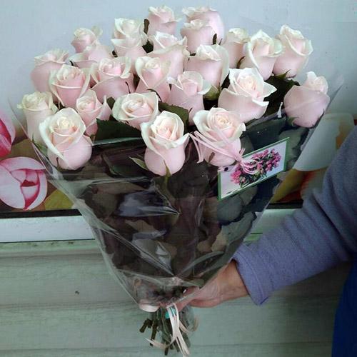 33 кремові троянди фото