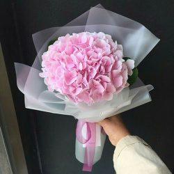 букет Рожева гортензія