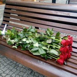 11 метрових троянд в Івано-Франківську фото товару
